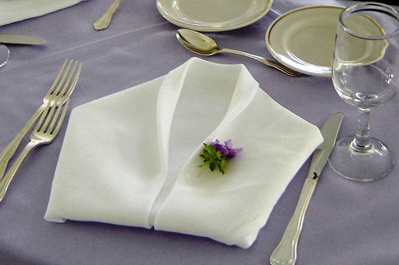Folded napkin - Gallery
